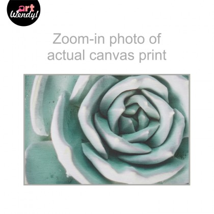 "Framed Art Print ""Succulent Plant I"""