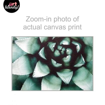 "Framed Art Print ""Succulent Plant II"""