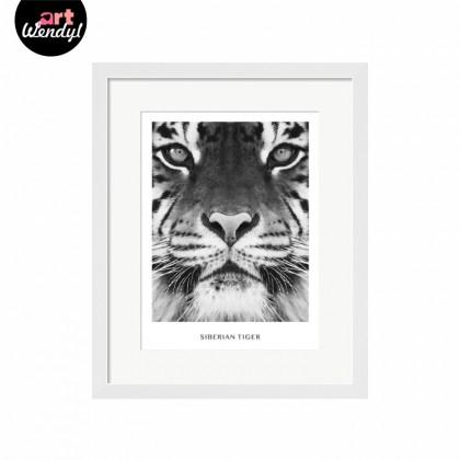 """Framed Art Print """"Siberian Tiger"""""""