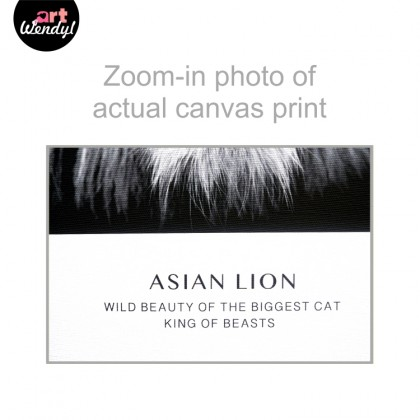 """Framed Art Print """"Asian Lion"""""""